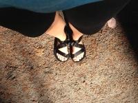 Unshoes Pah Tempe